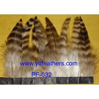 Feather Trimming thumbnail image