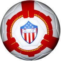 PVC Football (SG-0113)