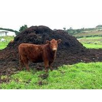 chicken litter and cow dung as organic fertilizer