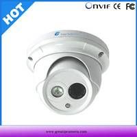 2013 Hot 21 Languages Supported Metal-Housing IR Security Dome IP Camera