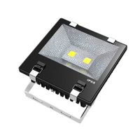 120W Max. LED Floodlight, Floodlight, LED Flood Light, Flood Light, Floodlights, LED Projector lamp, thumbnail image