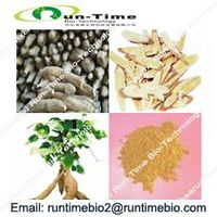 Kudzu Root P.E. with Puerarin 30% to 90%,Isoflavones40%