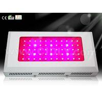 55*3W LED Grow Lights thumbnail image