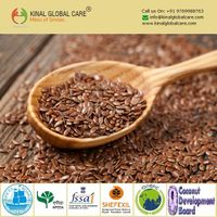 Best Quality Indian Flax Seeds