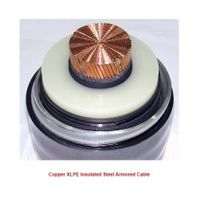 Copper XLPE Insulated Steel Armored Power Cable