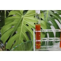 NON-GMO Soy Lecithin Liquid