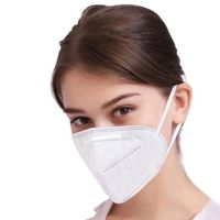 Custom Non-woven Earloop KN95 Disposable Protective Mask thumbnail image