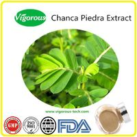 China manufacturer high quality phyllanthus niruri chanca piedra extract