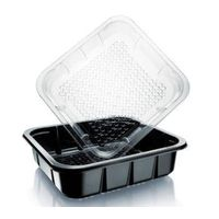 Fresh Fruit and Vegetable Anti-fog PET tray