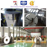 Stainless Steel Coils & Strips (SUS201 ,304 ,316,409 etc.)