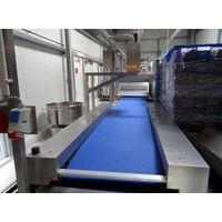 Rondo Doge Dough Processing line