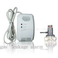 Wird Gas Alarm with Valve