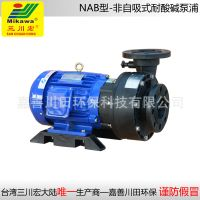 Non self-priming pump NAB100102 FRPP