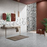 RF126111 Terrazzo For Living room Dining room Bedroom Balcony Wall and Floor use (600X1200mm)