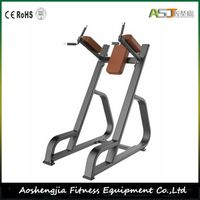 S841 Vertical Knee Up Gym Equipment thumbnail image