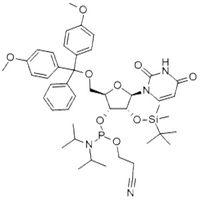 rU Phosphoramidite 118362-03-1