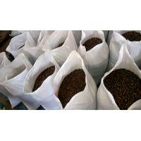 Guarana Seeds Brazil