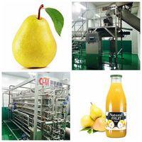 Pear Processing Line,pear juice production line machine thumbnail image