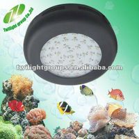 2012 One wire white 14000K for freshwater fish led aquarium lights
