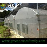 Multi Span Greenhouse with Plastic Cover thumbnail image