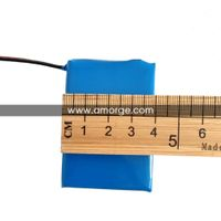Amorge 24V 1.25Ah Polymer Battery Pack for Power Tool Battery thumbnail image