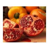 Pomegranate Powder Extract thumbnail image