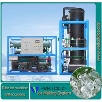 15T 20T industrial tube ice machine supplier in China