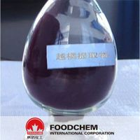 Bilberry Extract - Anthocyanins