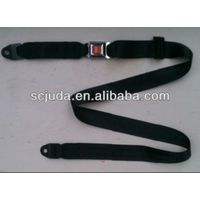 Bus 2 point seat belt