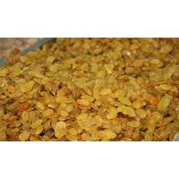 GOLDEN RAISINS,BLACK RAISINS,INDIAN RAISINS EXPORT QUALITY thumbnail image