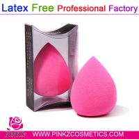 Hydrophilic Latex Free Beauty Sponge Blender/Blender Sponge Puff free sample