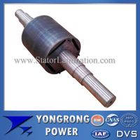 Permanent Magnet Electric Motor Die Cast Rotor Core