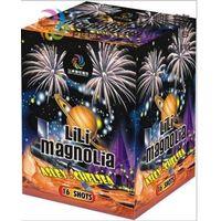 Cake Fireworks (16 Shots)