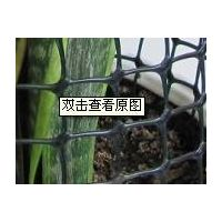 plastic mesh tree guards thumbnail image