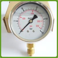 High quality factory wholesale glycerine silicone oil filled pressure gauge