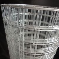 Galvanized Welded Wire Mesh thumbnail image