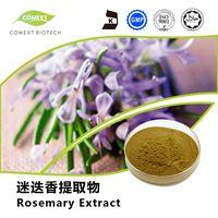 Ursolic Acid 25%~98% Power Rosemary Leaf Extract thumbnail image