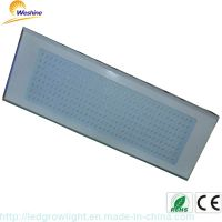 600W led grow light best sales at stable quality thumbnail image