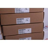 SIEMENS 6DS1311-8AA HOT SELL