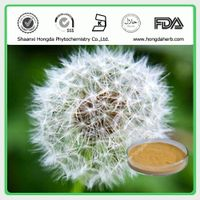 Dandelion Extract 100%pure powder 5:1,10:1, 20:1