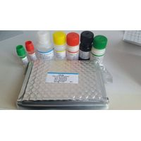 HAV IgM diagnostic elisa kit