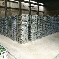 Lead Ingot for cable sheathing