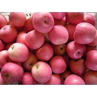 fuji apple thumbnail image
