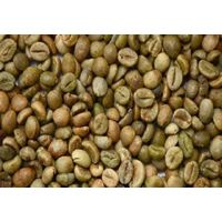 Washed arabica green coffee beans Grade / Unwashed arabica green coffee beans Grade