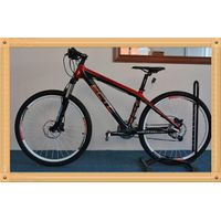 carbon completed mountain bicycle,carbon frame/wheel/handlebar/shimano groupset for MTB