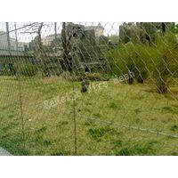 Animal enlcosure,zoo mesh,aviary mesh,rope mesh thumbnail image