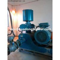 roots blower & vacuum pump