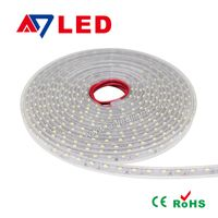 Ultra bright flexible DC12V/24V 5050/2835/3528 IP 67 led strip