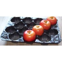 China Gold Supplier Blister Polypropylene Apple Packing Tray Liners with Good Quality