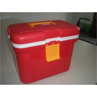 Mini Outdoor Cooler Box 10 Liter